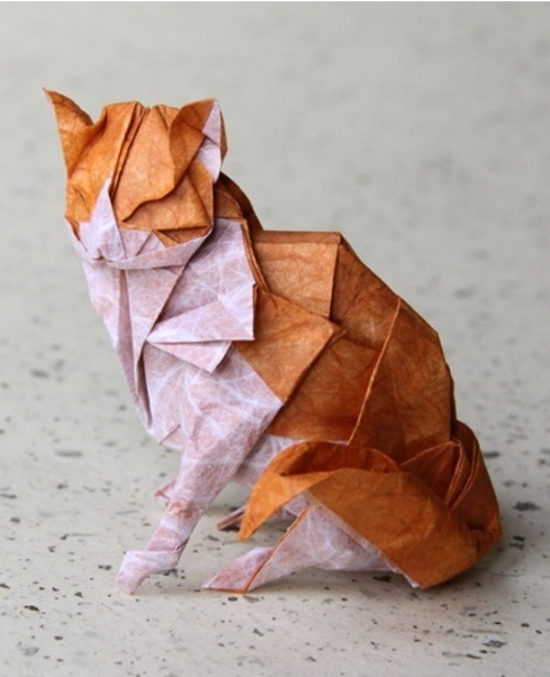 May Free Class -- ORIGAMI