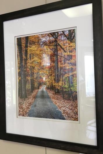 Fall Road, Sewanee, TN by Andrew Kenworthy $155