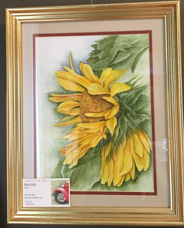 Sunflower by Marie Kelly $60